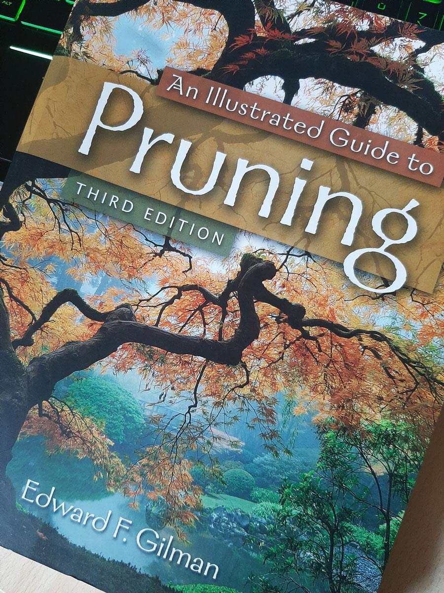Copertina Pruning