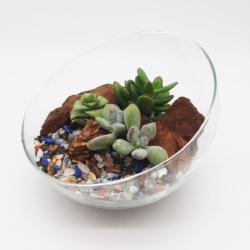 Terrarium-StoneGlass